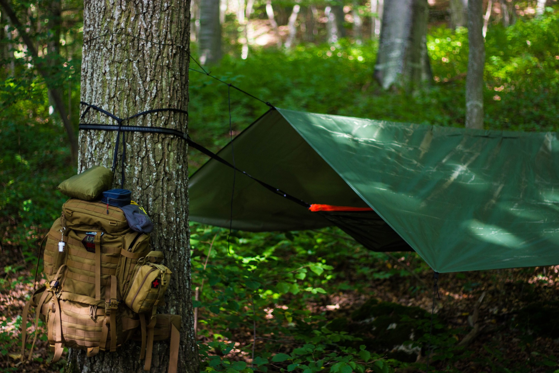 survival namiot